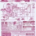 kikutokouyou2010ura